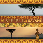Savanna Land Kit