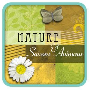 Kit de digiscrapbooking sur le thème nature, saisons et animaux